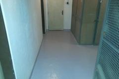 Podlahy natřeny barvou na beton